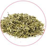 Extracto de hojas de damiana