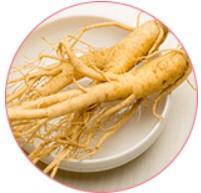 Extracto de raíz de ginseng