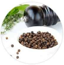 Extracto del fruto de la pimienta negra Bioperine®