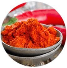 Extracto del fruto del pimiento chile