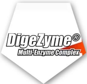 El complejo DigeZyme