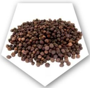 El extracto de pimienta negra