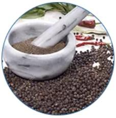 Extracto del fruto de la pimienta negra