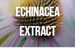 Tiene efecto antiinflamatorio, acelera la regeneración de los tejidos dañados