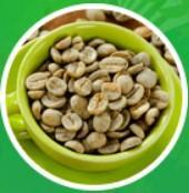 EXTRACTOS DE CAFÉ VERDE TIBETANO