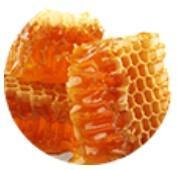 Cera de abejas