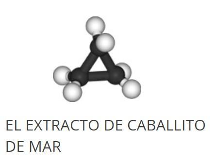 EL EXTRACTO DE CABALLITO DE MAR