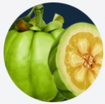 Extracto del fruto de la garcinia cambogia